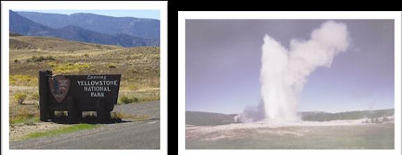 Vault Repair Yellowstone